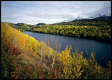 Long Lake surrounded by aspens in autumn color. Alaska, USA