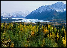 Matanuska Glacier in the fall. Alaska, USA
