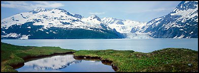 Fjord with snowy mountains. Prince William Sound, Alaska, USA (Panoramic color)