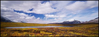 Tundra landscape and clouds in autumn. Alaska, USA (Panoramic color)