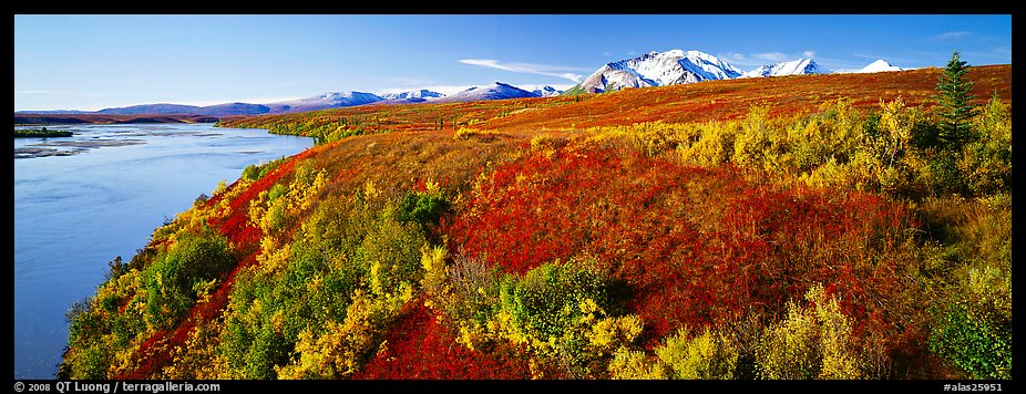 Tundra fall scenery with bright colors and river. Alaska, USA (color)