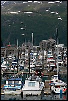 Yachts anchored in small boat harbor. Whittier, Alaska, USA ( color)