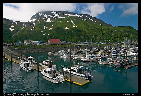 Yachts ready for sailing and harbor. Whittier, Alaska, USA (color)