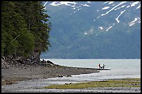 Women fishing and dog, at the edge of Passage Canal Fjord. Whittier, Alaska, USA