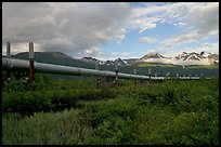 Alyeska Pipeline and mountains. Alaska, USA (color)