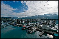 Small boat harbor, morning. Seward, Alaska, USA ( color)
