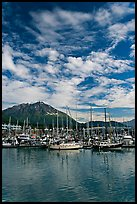 Harbor, mountains and cloud reflections. Seward, Alaska, USA ( color)