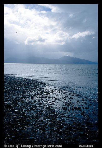 Katchemak Bay from the Spit, Kenai Mountains in the backgound. Homer, Alaska, USA (color)