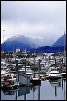 Small Boat Harbor on the Spit with Kenai Mountains in the backgound. Homer, Alaska, USA