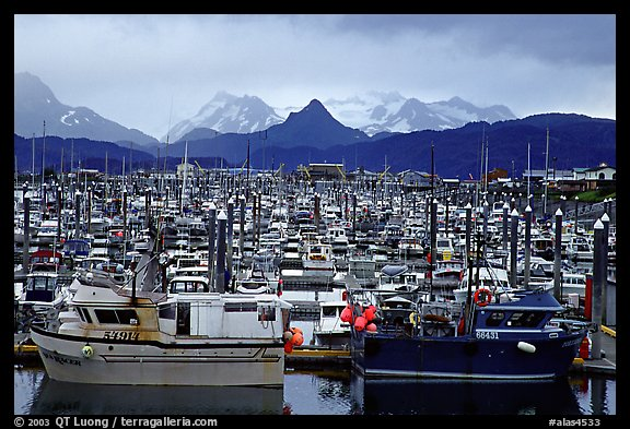 Small Boat Harbour on the Spit with Kenai Mountains in the backgound. Homer, Alaska, USA (color)