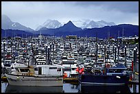 Small Boat Harbour on the Spit with Kenai Mountains in the backgound. Homer, Alaska, USA