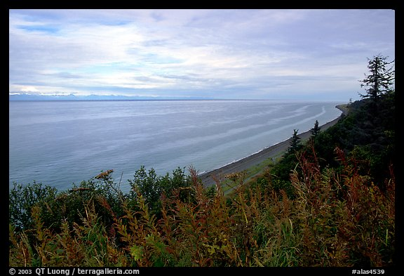 Cook Inlet. Ninilchik, Alaska, USA (color)