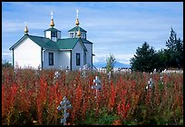 Old orthodox Russian church. Ninilchik, Alaska, USA ( color)