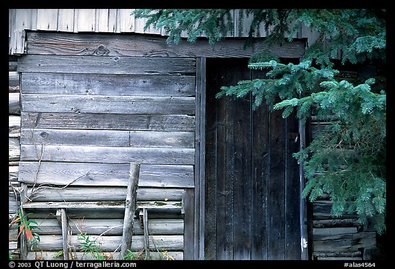 Cabin detail. Hope,  Alaska, USA (color)