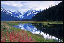 Chugatch Mountains reflected in pond near Portage. Alaska, USA