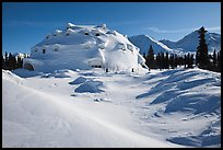 Igloo-shaped building in snowy landscape. Alaska, USA (color)