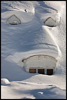 Windows on snow-covered roof. Alaska, USA ( color)