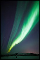 Aurora Borealis streaming above person with outstretched arms. Alaska, USA (color)