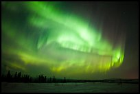 Magnetic storm in sky above snowy meadow. Alaska, USA ( color)
