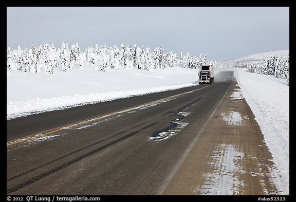 Dalton Highway bordered by snow-covered trees. Alaska, USA (color)