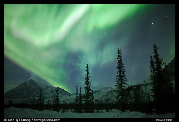 Aurora Borealis above Brooks Range in winter. Alaska, USA (color)