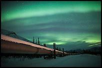 Trans Alaska Oil Pipeline at night with Northern Lights. Alaska, USA ( color)