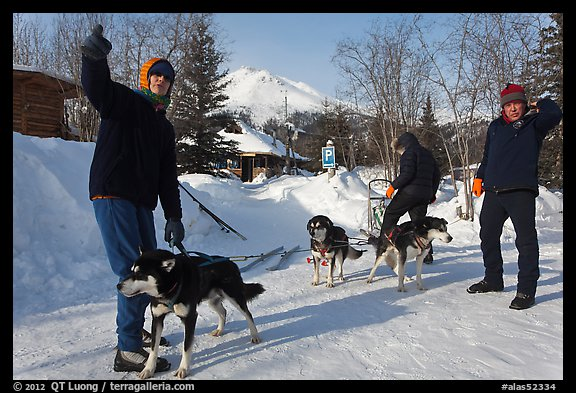 Residents preparing dog sled. Wiseman, Alaska, USA