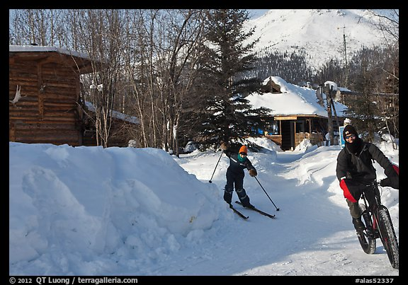 Winter recreation with snow-tired bike and skis. Wiseman, Alaska, USA (color)