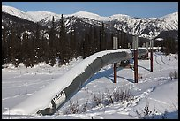 Trans Alaska Oil Pipeline in winter. Alaska, USA (color)