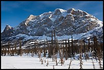 Mount Sukakpak in winter. Alaska, USA ( color)
