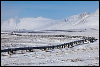 Alyeska Pipeline snaking to the North Slope in winter. Alaska, USA (color)