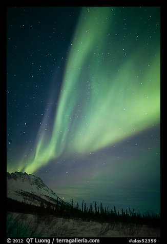 Northern Lights and starry night sky, Brooks Range. Alaska, USA (color)