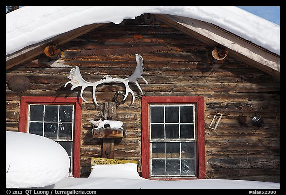 Log cabin facade with antlers. Wiseman, Alaska, USA (color)