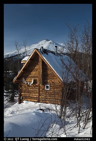 Log cabin in winter. Wiseman, Alaska, USA (color)