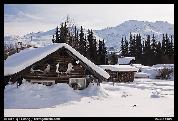 Heavily snow-covered cabins in winter. Wiseman, Alaska, USA (color)