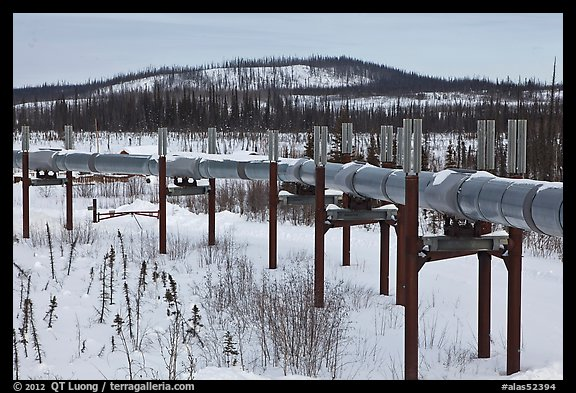 Trans Alaska Pipeline in winter. Alaska, USA (color)