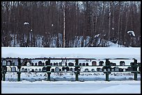 Mailboxes. Alaska, USA ( color)