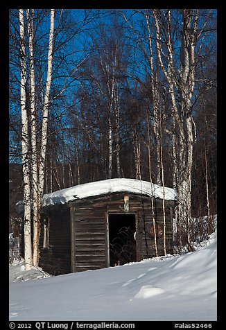 Historic cabin in winter, Chatanika. Alaska, USA