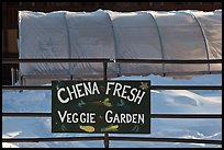 Greehouse used for vegetable production. Chena Hot Springs, Alaska, USA (color)