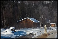 Woman with winter coat walking on path to cabins. Chena Hot Springs, Alaska, USA (color)