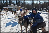 Woman dog musher posing with dog team. Chena Hot Springs, Alaska, USA ( color)