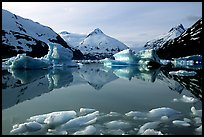 Portage Lake with icebergs. Alaska, USA (color)