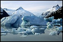 Portage Lake, with icebergs and mountain reflections. Alaska, USA (color)