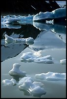 Floating ice and mountain reflections, Portage Lake. Alaska, USA ( color)