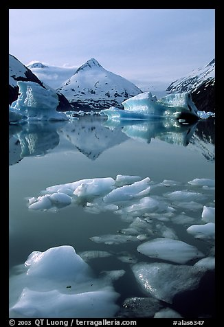 Floating ice in Portage Lake with mountain reflections. Alaska, USA (color)