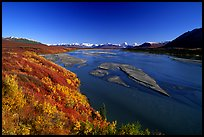 Wide river and autumn colors on the tundra. Alaska, USA ( color)