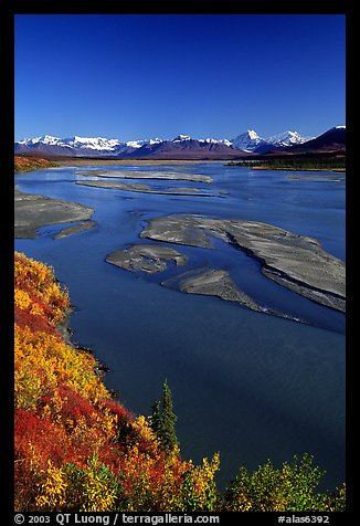 Wide Susitna River and fall colors on the tundra. Alaska, USA