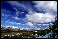 Valley and large white clouds. Alaska, USA ( color)