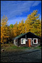 Log cabin and trees in fall color. Alaska, USA