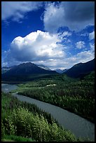 Matanuska River and Chugach mountains in summer. Alaska, USA ( color)